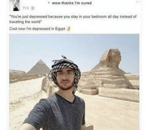 "meIRL: wow thanks i'm cured  11 h  ""You're just depressed because you stay in your bedroom all day instead of  traveling the world""  Cool now I'm depressed in Egypt meIRL"