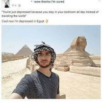 "Memes, Wow, and Cool: wow thanks i'm cured  You're just depressed because you stay in your bedroom all day instead of  traveling the world""  Cool now I'm depressed in Egypt tag someone who should go to egypt to cure their mental illness 😫😫😫😤😤👋🏻👋🏻"