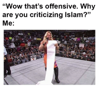 """Memes, Wow, and Islam: """"Wow that's offensive. Why  are you criticizing Islam?""""  Me:  (C"""