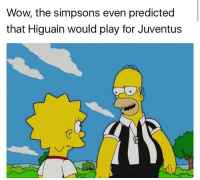 these simpsons memes are just too lit omg 😂😂😂: Wow the simpsons even predicted  that Higuain would play for Juventus these simpsons memes are just too lit omg 😂😂😂