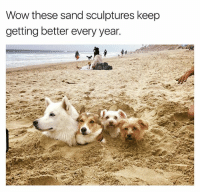 Memes, Wow, and Satan: Wow these sand sculptures keep  getting better every year. Mount Borkmore | 👉 @satan made this sand castle