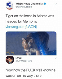🤣Facts: wREG Nevis channel 3 .  @3onyourside  Tiger on the loose in Atlanta was  headed for Memphis  via.wreg.com/uAONj  Ryuu  @UrWordHere  Now how the FUCK y'all know he  was on on his way there 🤣Facts