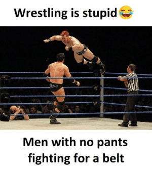 Wrestling is really dumb: Wrestling is stupid  Men with no pant:s  fighting for a belt Wrestling is really dumb