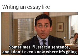 Tumblr, Http, and Com: Writing an essay like  Sometimes I'll start a sentence,  and I don't even know where it's going If you are a student Follow @studentlifeproblems