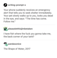 "Fuck You, Funny, and Phone: writing-prompt-s  Your phone suddenly receives an emergency  alert that tells you to seek shelter immediately.  Your pet slowly walks up to you, looks you dead  in the eye, and says: ""The time has come.  Follow me.""  pleaseletthisjimbetaken  I have fish where the fuck you gonna take me,  the back corner of your tank?  pandasonice  The Shape of Water, 2017 so made u reported my last post. it was so funny to me i'm sorry"