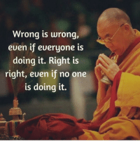 Beautiful, Love, and Memes: Wrong is wrong,  euen if eueryone is  doing it. Right is  right, euen if no one  is doing it. 🙏🏼 ✨ . ❤️love. Flow. Serve 🙏🏼 . . . . wordsdoinspire wordsoftheday buddha higherawakening highervibrations higherpower kindness thirdeye pressure collors stars universe betterlife vibrations loveandlight beautiful magic love healing adventure peace yourdreams signs feelings affirmations