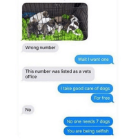 Dogs, Funny, and Free: Wrong number  Wait I want one  This number was listed as a vets  office  I take good care of dogs  For free  No  No one needs 7 dogs  You are being selfish See you in court.