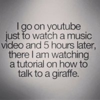 Music Memes Funny: I go on youtube  just to watch a music  video and 5 hours later,  there am watching  a tutorial on how to  talk to a giraffe.