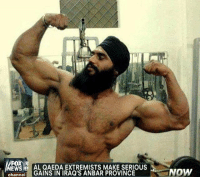 Sikh gains bro.: WS AL QAEDA EXTREMISTS MAKE SERIOUS  calGAINS IN IRAQ'S ANBAR PROVINCE  NOW Sikh gains bro.