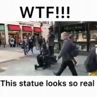 Memes, Wtf, and Watch: WTF!!!  BROWN TİNAS  This statue looks so real Watch till the end! 😂😂 @_deeznuts4prez