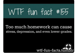 Not funny, didnt laugh: WTF fun fact # 155  Too much homework can cause  stress, depression, and even lower grades.  wtf-fun-facts.tumblr Not funny, didnt laugh