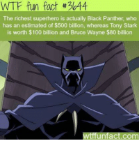 Facts, Superhero, and Wtf: WTF fun fact #3044  The richest superhero is actually Black Panther, who  has an estimated of $500 billion, whereas Tony Stark  is worth $100 billion and Bruce Wayne $80 billion  A  unfact.COm ~ Dc & Marvel Universe