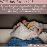 Memes, Wtf, and Anxiety: WTF fun fact #4648  Horror movie soundtracks sometimes include infrasound, which  is sound below the range of human hearing. Even though we  can't hear it we can still feel it and infrasound has been shown  to induce anxiety, heart palpitations, and shivering.  wtffunfact.com 126 away from 20k❤️❤️