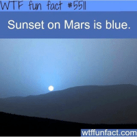 - Woah I'm so happy it's Friday(: scarystories: WTF fun fact 55ll  Sunset on Mars is blue  wtffunfact.com - Woah I'm so happy it's Friday(: scarystories