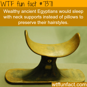 wtf-fun-factss:  Neck supports were used instead of pillows by ancient Egyptians.. - WTF fun facts   : WTF fun fact #7311  Wealthy ancient Egyptians would sleep  with neck supports instead of pillows to  preserve their hairstyles  wtffunfact.comm wtf-fun-factss:  Neck supports were used instead of pillows by ancient Egyptians.. - WTF fun facts