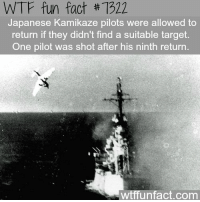 """Wtffunfact: WTF fun fact #7322  Japanese Kamikaze pilots were allowed to  return if they didn't find a suitable target  One pilot was shot after his ninth return  """"半  wtffunfact.com"""