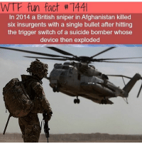 wtf fun fact: WTF fun fact #7441  In 2014 a British sniper in Afghanistan killed  six insurgents with a single bullet after hitting  the trigger switch of a suicide bomber whose  device then exploded