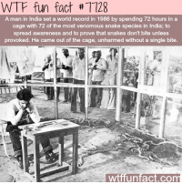 Wtf, India, and Record: WTF fun fact #7728  A man in India set a world record in 1986 by spending 72 hours in a  cage with 72 of the most venomous snake species in India; to  spread awareness and to prove that snakes don't bite unless  provoked. He came out of the cage, unharmed without a single bite