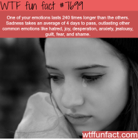 WTF: WTF fun fact # 79  One of your emotions lasts 240 times longer than the others.  Sadness takes an average of 4 days to pass, outlasting other  common emotions like hatred, joy, desperation, anxiety, jealousy,  guilt, fear, and shame  wtffunfact.com