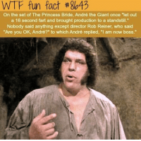 """princess bride: WTF fun fact #8643  On the set of The Princess Bride, André the Giant once """"let out  a 16 second fart and brought production to a standstill.""""  Nobody said anything except director Rob Reiner, who said  """"Are you OK, André?"""" to which André replied, """"I am now boss."""""""