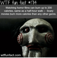 Forget exercise. Watch a movie. 👌: WTF fun fact #IT  Watching horror films can burn up to 200  calories, same as a half-hour walk  Scary  movies burn more calories than any other genre.  wtffunfact.com Forget exercise. Watch a movie. 👌