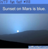 Never knew this 😍 Follow me @creepy.fact for more interesting posts!!! 😈👻👽: WTF fun fact  Sunset on Mars is blue  wtffunfact.com Never knew this 😍 Follow me @creepy.fact for more interesting posts!!! 😈👻👽