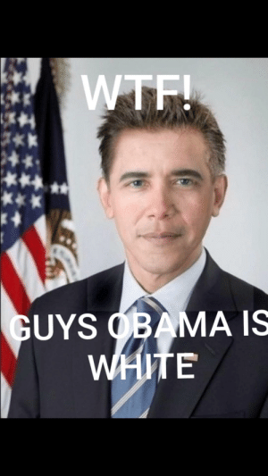 Obama, Wtf, and White: WTF!  GUYS OBAMA IS  WHITE GUYS OBAMA IS WHIT!!@@!!
