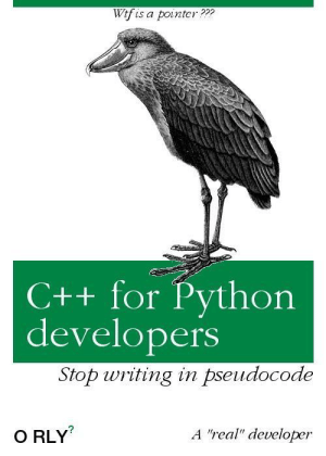 "My new book.: Wtf is a pointcr???  C++ for Python  developers  Stop writing in pseudocode  A ""real"" developer  O RLY My new book."