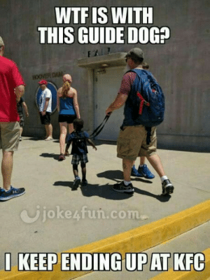 Joke4Fun Memes: Witty racist joke..: WTF IS WITH  THIS GUIDE DOG?  Ujoke4fun.com  1 KEEP ENDING UP AT KFC Joke4Fun Memes: Witty racist joke..