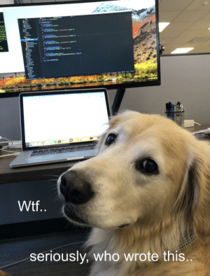 good gorl comes for head scritch, stays for scathing code review: Wtf..  seriously, who wrote this... good gorl comes for head scritch, stays for scathing code review