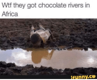 Africa, Wtf, and Chocolate: Wtf they got chocolate rivers in  Africa  ifunny.ce