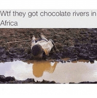 Africa, Lit, and Memes: Wtf they got chocolate rivers in  Africa Man they lit out there smh