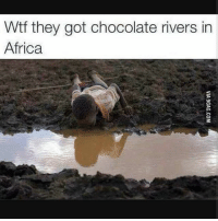 Africa, Memes, and Wtf: Wtf they got chocolate rivers in  Africa So unfair