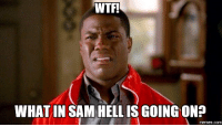 What The Hell Is Going On: WTF!  WHAT IN SAM HELL IS GOING ON?  memes.com