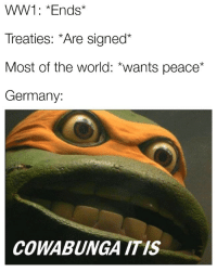 "Party, Germany, and Time: WW1: *Ends*  Treaties: Are signed""  Most of the world: *wants peace*  Germany:  COWABUNGA ITIS Party time"