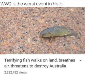 God, Reddit, and The Worst: WW2 is the worst event in histo-  Terrifying fish walks on land, breathes  air, threatens to destroy Australia  2,232,782 views Oh god oh fuck
