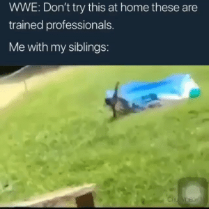 Af, Funny, and World Wrestling Entertainment: WWE: Don't try this at home these are  trained professionals.  Me with my siblings: Accurate af😂💀