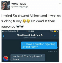 Fucking, Funny, and Memes: WWE PAIGE  axadoringpaige  I trolled Southwest Airlines and it was so  fucking funny  I'm dead at their  response  ooo T-Mobile  2:33 PM  60%  Southwest Airlines  @Southwest Air  Hi, I have a question regarding  my last flight?  12:48 PM  Hey there! What's going on?  Linnea 💁🏼