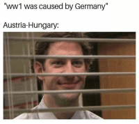 "<p>(stares while collapsing) via /r/memes <a href=""https://ift.tt/2IOUfiV"">https://ift.tt/2IOUfiV</a></p>: ""WWI was caused by Germany""  Austria-Hungary: <p>(stares while collapsing) via /r/memes <a href=""https://ift.tt/2IOUfiV"">https://ift.tt/2IOUfiV</a></p>"