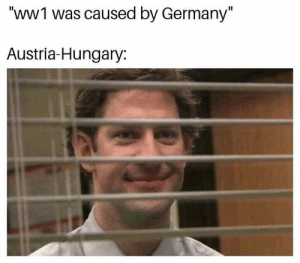 "(stares while collapsing): ""WWI was caused by Germany""  Austria-Hungary: (stares while collapsing)"