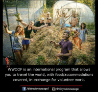 Memes, Programming, and 🤖: WWOOF is an international program that allows  you to travel the world, with food/accommodations  covered, in exchange for volunteer work  /didyouknowpagel  Cu  @didyouknowpage