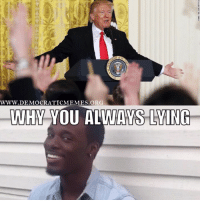 When you watch the Donald Trump press conference! www.democraticmemes.org: WWW.DEMOCRATICMEMES ORG  WHY YOU ALWAYS LAING When you watch the Donald Trump press conference! www.democraticmemes.org