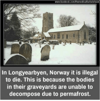 Memes, Norway, and 🤖: www.facebook.com/themedicalfactsdotcom  In Longyearbyen, Norway it is illegal  to die. This is because the bodies  in their graveyards are unable to  decompose due to permafrost.