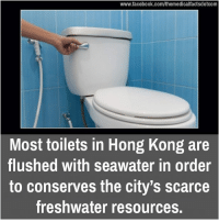 Facebook, Memes, and facebook.com: www.facebook.com/themedicalfactsdotcom  Most toilets in Hong Kong are  flushed with seawater in order  to conserves the city's scarce  freshwater resources.