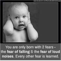 loud noises: www.facebook.com/themedicalfactsdotcom  You are only born with 2 fears  the fear of falling & the fear of loud  noises. Every other fear is learned.