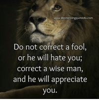 Do Not Correct A Fool: www.Mesmerizingquotes4u.com  Do not correct a fool,  or he will hate you,  correct a wise man,  and he will appreciate  you