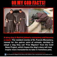 Animals, Dogs, and Facebook: www.omg facts online.com I fb.com  m g facts online I a oh my god facts  vako tumblr.com  mage Source  A stray dog in Bolivia joined a monastery and became  a monk. The resident monks of St. Francis Monastery,  named for the patron saint of animals, decided to  adopt a dog they call Friar Bigoton' from the Cold  Nose Project, which hopes the dog's story will now  inspire more monasteries to take in homeless pets.  Join Facebook's Biggest Facts Library with 6 Million+ Fans- www.facebook.com/omgfactsonline