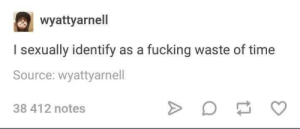 I Sexually Identify As: wyattyarnell  I sexually identify as a fucking waste of time  Source: wyattyarnell  38 412 notes
