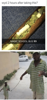 School, Wyd, and Xxx: wyd 2 hours after taking this?  MAGIC SCHOOL BUS https://t.co/K7jqT2S3mb