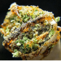 Memes, Smoking, and Wyd: Wyd after smoking this...